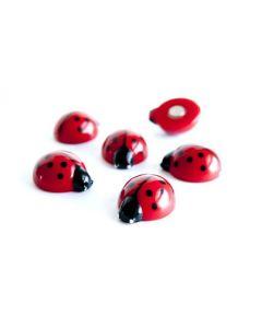 6 x Kühlschrankmagnete Ladybug 20x17x10mm Magnete für Pinnwand Magnettafel